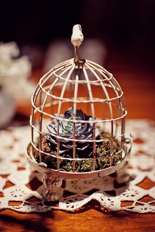 dekoračné vtáčie klietky