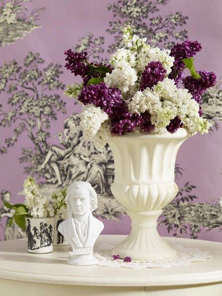 Voňavé kvetinové aranžmány z orgovánu 7