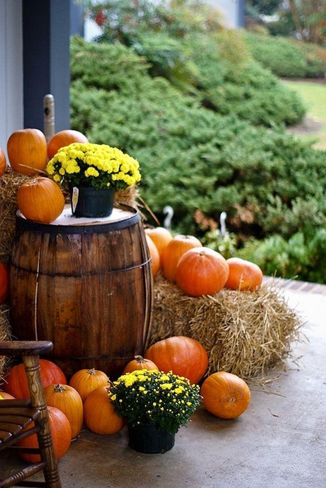 Najobľúbenejšie jesenné dekorácie – čas tekvíc a tekvičiek prichádza 5
