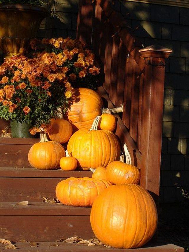 Najobľúbenejšie jesenné dekorácie – čas tekvíc a tekvičiek prichádza 6